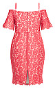 Plus Size Lace Whisper Dress - raspberry
